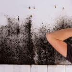 Schimmel an der Wand - Schimmelbeseitigung - Küchenwand