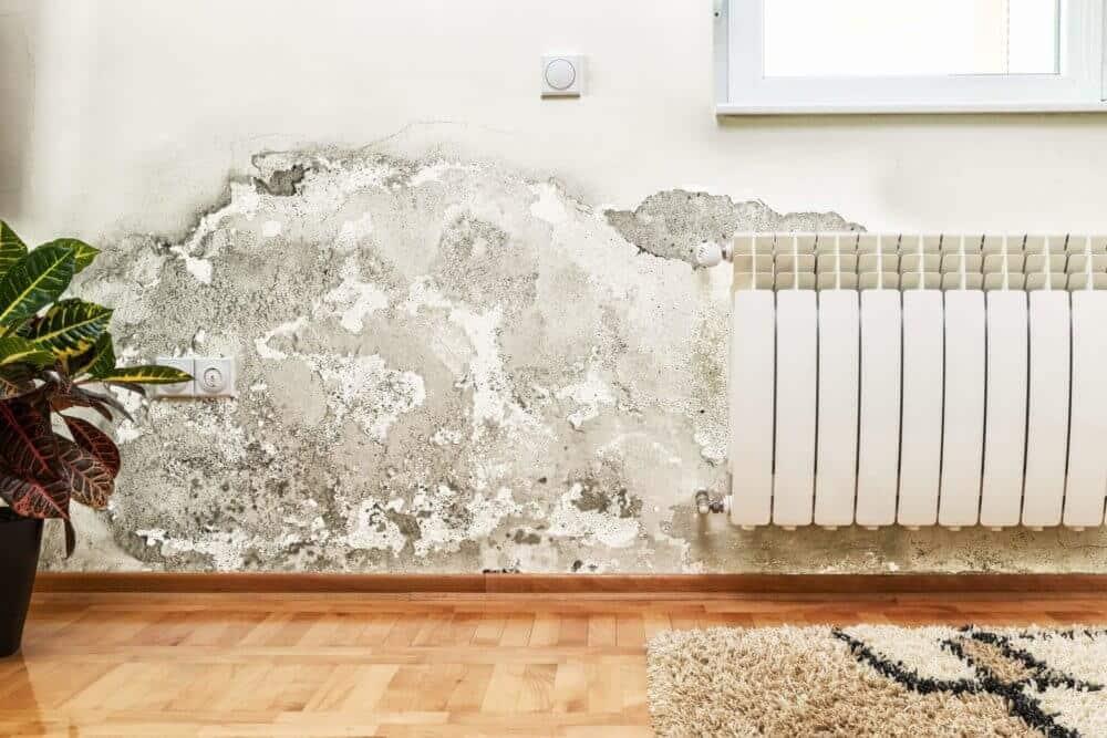 Was kann eine Bautrocknung beschleunigen?